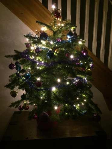Peggy Tree